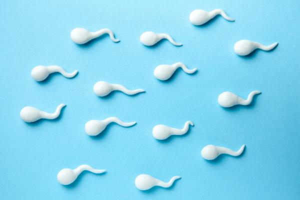 how to make sense of a semen analysis